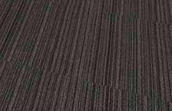 Fusion Harwood Flooring Toronto Mistywood Caledon 501 Collection Carpet Tile